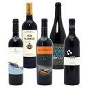【送料無料】驚愕の美味さスペイン超コスパワイン激旨赤5本セットワインセット^W0SCA0SE^