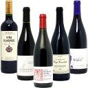 ワインセット 送料無料BIOワイン極上赤だけ5本セット ワイン ギフト wine gift パーティ 料理に合う 安くて美味しい W03I50SE