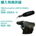 JVC GY-HM250 4Kメモリーカードカメラレコーダー〔購入特典:AZDEN SGM-250CX-V ガンマイク ほか1点〕