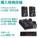 JVC GY-HM850 HDメモリーカードカメラレコーダー〔購入特典:IDX CUE-D75 2本 Vマウントバッテリー ほか2点〕
