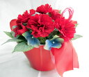 Pw_500red-carnation1