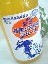 愛媛の福岡自然農園甘夏柑ストレート100%ジュース 500ml【賞味期限:2017.6.17】