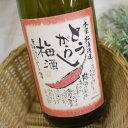 とうがらし梅酒 1800ml / 本家松浦酒造