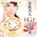 Egf_shohin