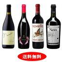 【新酒ワイン】ヴィーノ・ノヴェッロ 2018 4本セット【送料無料】【赤ワインセット】10月30日解禁しました!