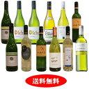 南アフリカ日常ワイン 白だけ12本セット【送料無料】【白ワインセット】[辛口]