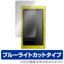 【15%OFFクーポン配布中】ウォークマン NW-A40シリーズ / NW-A30シリーズ 保護フィルム OverLay Eye Protector for ウォークマン NW-A..