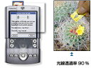 【メール便対応/送料込み】OverLay Brilliant for Palm Tungsten T