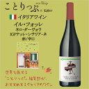 楽天ワイン館「ビバ ヴィーノ」イル・フォッレ ネロ・ダーヴォラ IGPテッレ・シチリアーネ イタリア産 赤ワイン 辛口 オーガニック ビオワイン 有機栽培 オーガニックワイン ことりっぷ ことりっぷコラボ かわいい かわいいラベル