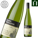 ブラン・ペスカドール スペイン産辛口 白ワイン スペインワイン 辛口 白ワイン