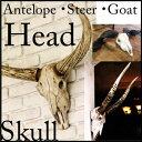 5%割引楽天ラクーポンが使える/ディスプレー/店舗什器/割引/送料無料/スカル/S355-72/Goat head /ゴートヘッド/S355-71/Steer head/スティアヘッド/ S355-70/Antelope head/アンテロープヘッド/壁掛け/頭蓋骨/DULTON/ダルトン【smtb-k】【kb】父の日