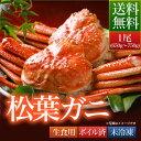 贈答品 送料無料 鳥取県 境港産 ボイル 松葉カニ 蟹 A級...