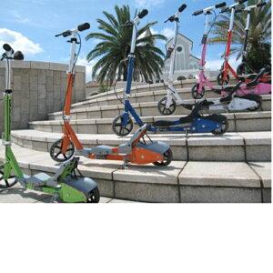 キックスケータプロテクタープレゼントキックボードキックスケーター子供用キッズ用送料無料/代引き手数料無料FlipperBoard(キックスケーター、キックボード)