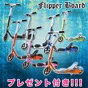 Flipper_1