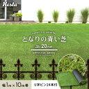 【人工芝】RESTAオリジナル 気楽にはじめるリアル人工芝 20mm となりの青い芝 1×10m U字ピン24本付き 【送料無料】__wmg-beckye-020