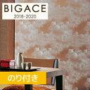 б┌╩╔╗цб█б┌д╬дъ╔╒дн╩╔╗цб█ BIGACE ╧┬╩┴ BA3475 __ba3475
