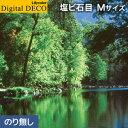 d8086wm