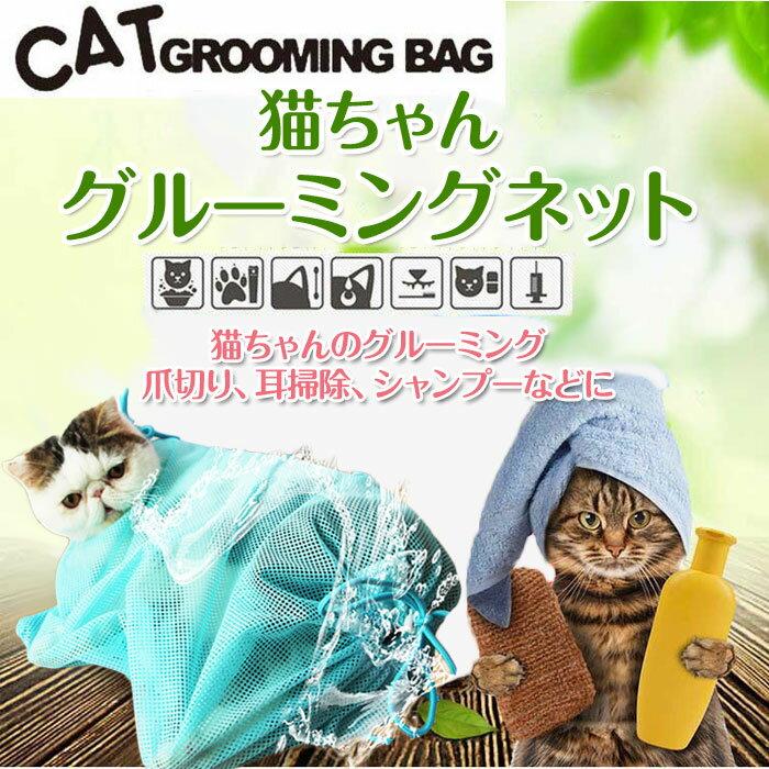 【猫動画】猫がお風呂入った後の足プルプル…かわいい