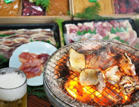 【送料無料】熊野地鶏 焼肉用カット肉600g /...の商品画像