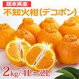 【送料無料】熊本県産 不知火柑(デコポン)「ハウスでべそ 2kg/4L〜2Lサイズ(約7〜9玉)」【期間限定:12月下旬〜2月上旬】