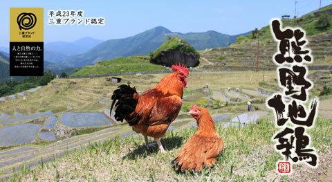 【送料無料】熊野地鶏 焼肉用カット肉600g ...の紹介画像3