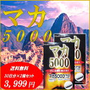 送料無料 マカ5000 60粒 約30日分 2箱セット マカ 5000mg 亜鉛 6mg アルギニン 50mg 配合サプリ