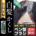 日高昆布 白髪かくし ブラック 20g 部分白髪隠し 日本製 筆 ブラシタイプ メンズ レディース「メール便で送料無料」
