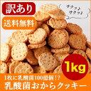 【訳あり】 1枚に乳酸菌100億個! 乳酸菌 豆乳おからクッキー 1Kg(200g×5袋)【近畿A】【宅配便B】