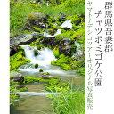 日本紀行 群馬県吾妻郡 チャツボミゴケ公園 (nk10-170629-115) 当店オリジナル写真販売 Photo frame, Chatsubomigoke Garden