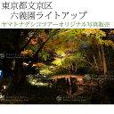 日本紀行 東京都文京区 六義園ライトアップ (nk13-161126-228) 当店オリジナル写真販