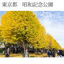 インテリア写真額縁 昭和記念公園2 当店オリジナル写真パネル オフィス・店舗の装飾に Photo f