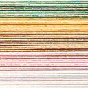 水引キット パール水引 5色×各5本入 (MZHB050) ※メール便では発送できません