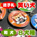 迷子札(笑い犬) 送料無料 秋田犬 甲斐犬 紀州犬 四国犬 北海道犬 狆 日本スピッツ 柴犬 グッズ
