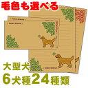 愛犬レターセット(大型犬) ゴールデンレトリバー ラ