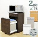 キッチンカウンター ダストボックス ペール付き ゴミ箱 キッチン 収納 2分別 キッチン用ごみ箱 幅55cm キャスター付き 引き出し付き 日本製 送料無料
