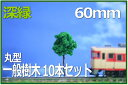 建築模型植栽 樹木模型60mm 10本セット深緑 鉄道模型1/100  【Nゲージレイアウト用品】【ジオラマ用品】【建築模型】【鉄道模型】【素材】【材料】【レイアウトパーツ】