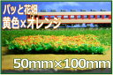 オレンジ レイアウト・ジオラマ カラースポンジシーナリー