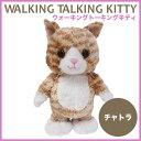 ウォーキングトーキングキティ チャトラ(歩くねこ しゃべる ぬいぐるみ ネコ 猫 ねこ かわいい プレゼント)