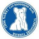 玄関やお車に♪ご自慢の犬のお名前、お誕生日入れ無料! ヨークシャーテリア 犬 ステッカー Dパターン