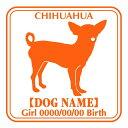 玄関やお車に♪ご自慢の犬のお名前、お誕生日入れ無料! 犬 ステッカーE チワワ スムース 正面タイプ