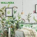 壁紙 クロス 輸入壁紙 おしゃれ フリース WALLPERA 花柄 2707-001 Viareggio ヴィアレッジョ