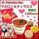 犬用のバレンタインデー人気ギフト マカロン&ティラミス ボッ...