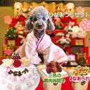 犬用の ひなまつり セット 壱之組 ケーキ ひなあられ 3色...