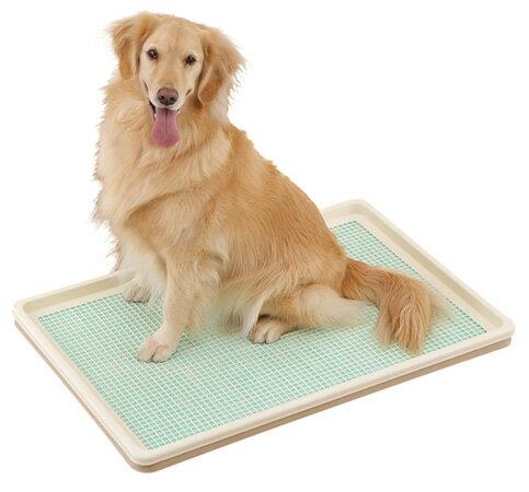 ボンビしつけるトレーXLメッシュタイプ大型犬用送料無料あす楽対応トイレ用品/トイレトレー・トイレ容器