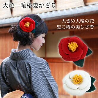 "Hair ornament (I chew カミカザリ and display it) coming-of-age ceremony (Seijin Shiki result pitches a camp spread) long-sleeved kimono hakama ""sum pink"" pearl & rhinestone hair ornament hair decoration, long-sleeved kimono hairstyle pink white"
