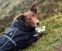 中型犬・大型犬用 トレントコート レインコート 【今なら送料無料! Hurtta Pro Torre