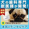 わんこの歯医者さん開発! Dr.YUJIRO (朝用ハタ乳酸菌デンタルパウダー)(※約3カ月分) 3000頭以上の犬の歯石除去(歯石取り)を行ってきた獣医師が開発。
