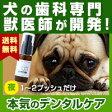 わんこの歯医者さん開発! Dr.YUJIRO (夜用ジェル)(※約3カ月分) 3000頭以上の犬の歯石除去(歯石取り)を行ってきた獣医師が開発。