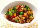 【無添加】 15種野菜のキーマカレー 【ドッグフード DOG FOOD 犬 手作り食 手作りご飯 ペットフード】