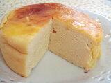 【無添加】 ヨーグルトチーズケーキ10センチホール【犬 おやつ 犬用おやつ 犬 ケーキ CAKE 犬用ケーキ ドッグフード DOG FOOD】